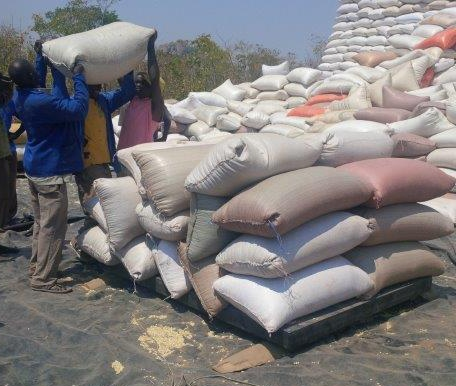 The new grain depot in Petauke, Zambia enables smallholder farmers to deposit their grain close to their farms and receive competitive rates